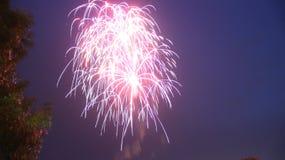 Firework Burst. Independence day fireworks display, multiple burst Royalty Free Stock Images