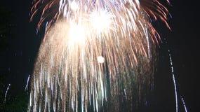 Firework Burst. Independence day fireworks display, multiple burst Stock Photography