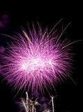 Firework Bursts Stock Image