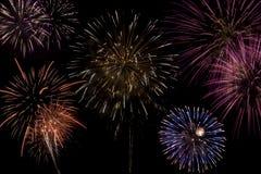 Firework Celebration Stock Photography