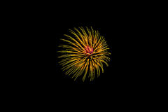 Firework celebration Royalty Free Stock Image