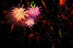Firework celebration on dark background. Stock Photo