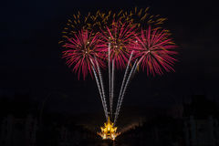 Firework Celebration Royalty Free Stock Photo