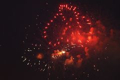 Firework close up view in the night sky