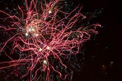 Firework. Royalty Free Stock Image