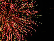 Firework detail. Close-up shot of firework exploding Royalty Free Stock Images