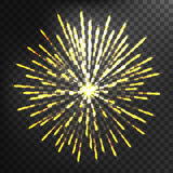 Firework different shapes colorful festive vector. Stock Photo