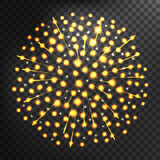 Firework different shapes colorful festive vector. Stock Photography