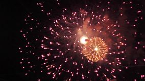 Firework display color stock footage