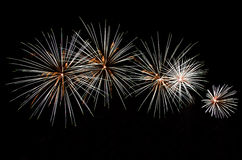 Firework display. Fireworks on a dark background Royalty Free Stock Photos