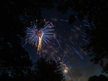 Firework Bursts Behind Trees stock photography