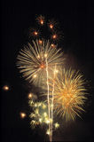 Firework display Stock Photography