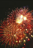 Firework display Royalty Free Stock Images