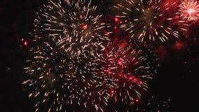 Firework display Stock Images
