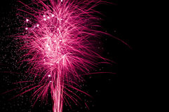 Firework display - with trails against black sky Royalty Free Stock Photography