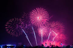 Firework display. In USA and background Stock Photography