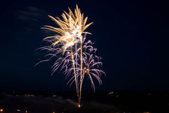 Firework. Evening salute for a holiday Stock Image