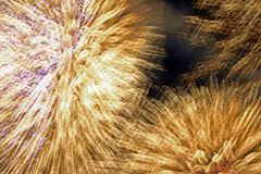 Firework exploding Stock Photography