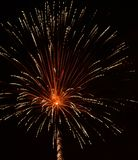 Firework explosion Stock Photography