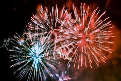 Firework ( Fireworks ) Royalty Free Stock Photography