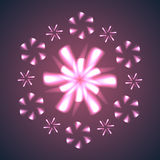 Firework Flowers and Snowflakes. Stock Image