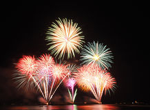Firework. Have many color in the sky royalty free stock photo