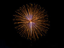 Firework. Light up the night sky Royalty Free Stock Photos