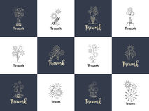 Firework logo design set Royalty Free Stock Images