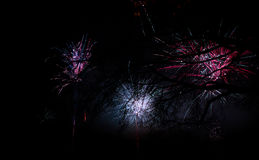 Firework at new year Royalty Free Stock Image