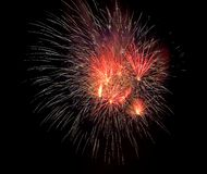 Firework at night Royalty Free Stock Photography