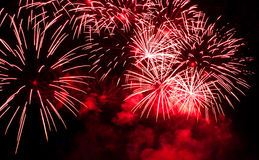 Firework in night. Stock Image