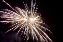 Firework at night Stock Photo