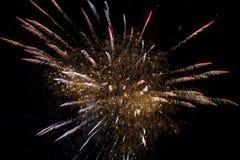 Firework at night Royalty Free Stock Photo