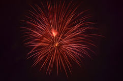 Firework in night sky Royalty Free Stock Photos
