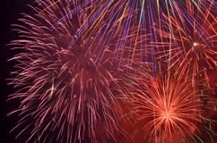 Firework in night sky. Colorful firework in night sky Royalty Free Stock Photography