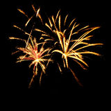 Firework in a night sky Royalty Free Stock Photo
