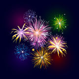Firework. In the night sky Stock Images