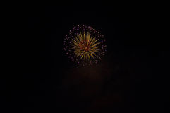 Firework. In night sky photo by nikon D90 app light room royalty free stock image