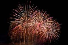 firework Os fogos-de-artifício coloridos bonitos na água surgem com um fundo preto limpo Festival do divertimento e competição do fotografia de stock royalty free