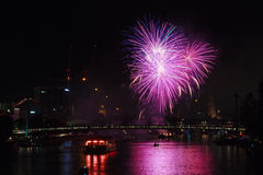 Firework over Frankfurt Royalty Free Stock Photography