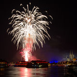 Firework over the Rhine River Stock Image