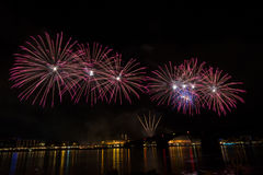 Firework over the rhine river Stock Photography