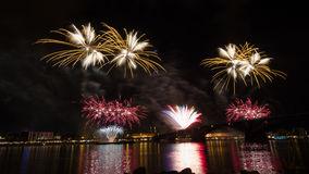 Firework over the rhine river Royalty Free Stock Photos