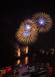 Firework over the rhine valley Royalty Free Stock Images