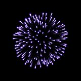 Firework purple bursting isolated black background. Beautiful night fire, explosion decoration, holiday, Christmas, New. Year. Symbol festival, American 4th Stock Images