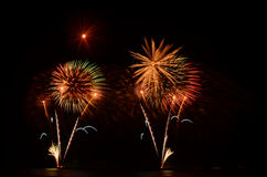 Firework, show ,celebrate, the king of birthday Royalty Free Stock Photo