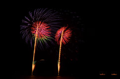 Firework, show ,celebrate, the king of birthday Royalty Free Stock Photography