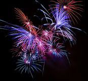 Firework streaks in the night Stock Images