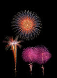 Firework. With Tree Shape and Star Boom on isolate Black Background Royalty Free Stock Photos
