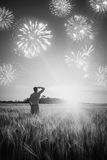 Firework in a wheat field. Black and white Royalty Free Stock Photography